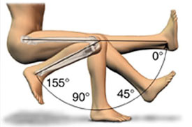 Range of Motion of Knee Joint
